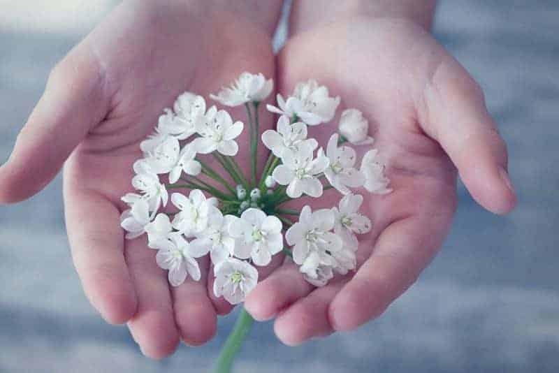 Prendre soin de soi naturellement grâce à la naturopathie