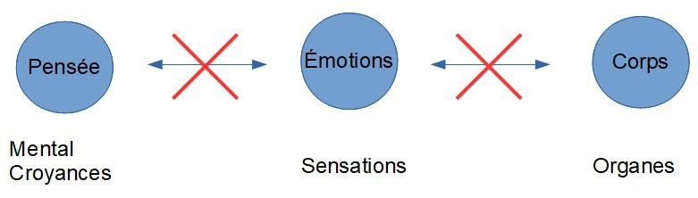 pensee-emotions-corps