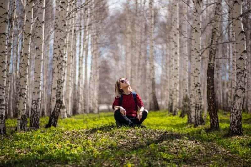 Sondage sur la méditation en forêt : votre avis m'intéresse !