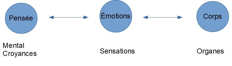 pensees-emotions-corps