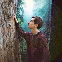 meditation foret sylvotherapie clement tisseuil naturopathe